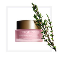 Multi-Active Day Cream Normal to Dry Skin