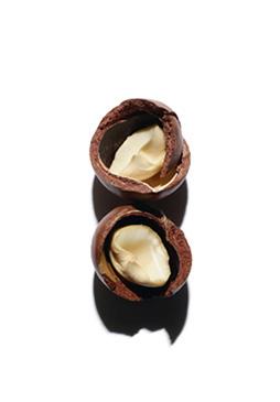 ส่วนผสม Macadamia nut oil