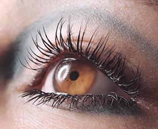ความยาวขนตา