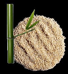 3 formules enrichies en extraits de plantes